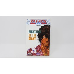 Bleach volume 5 glénat